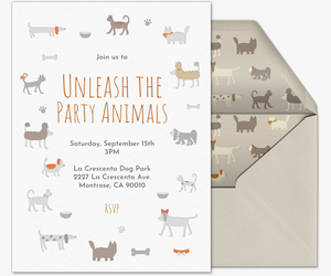 Pet All Breeds Invitation