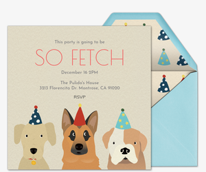 Pet party animal themed online invitations evite pet birthday hats invitation filmwisefo Choice Image